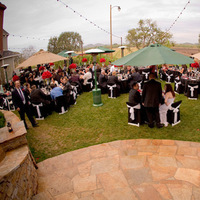 Reception, Flowers & Decor, Bella victorian vineyards