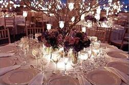 Centerpiece, Branches, Lanterns