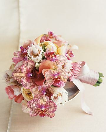 Flowers & Decor, Flowers, Orchids