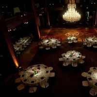 Reception, Flowers & Decor, Lighting, Flowers, Gobo