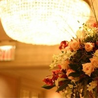 Reception, Flowers & Decor, Centerpieces, Flowers, Tammy becker ltd
