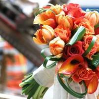 Flowers & Decor, Bride Bouquets, Flowers, Bouquet, Brides, Bouquets, Tammy becker ltd