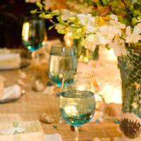 Reception, Flowers & Decor, blue, Beach, Centerpieces, Tables & Seating, Beach Wedding Flowers & Decor, Centerpiece, Sanddollar, Tables