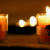 Candle, Tree, Theme, Palm, Morgan gallo events