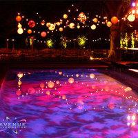 Reception, Flowers & Decor, Lighting