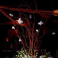 Flowers & Decor, white, Centerpieces, Flowers