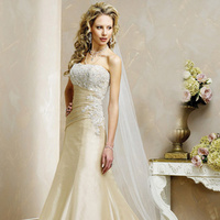 Wedding Dresses, A-line Wedding Dresses, Fashion, gold, dress, A-line