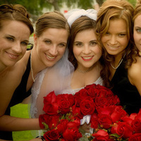 Bridesmaids, Bridesmaids Dresses, Fashion