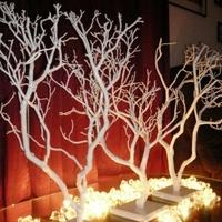Centerpiece, Wedding, Tree, Branch, Decoration, Manzanita, Manzanita creations
