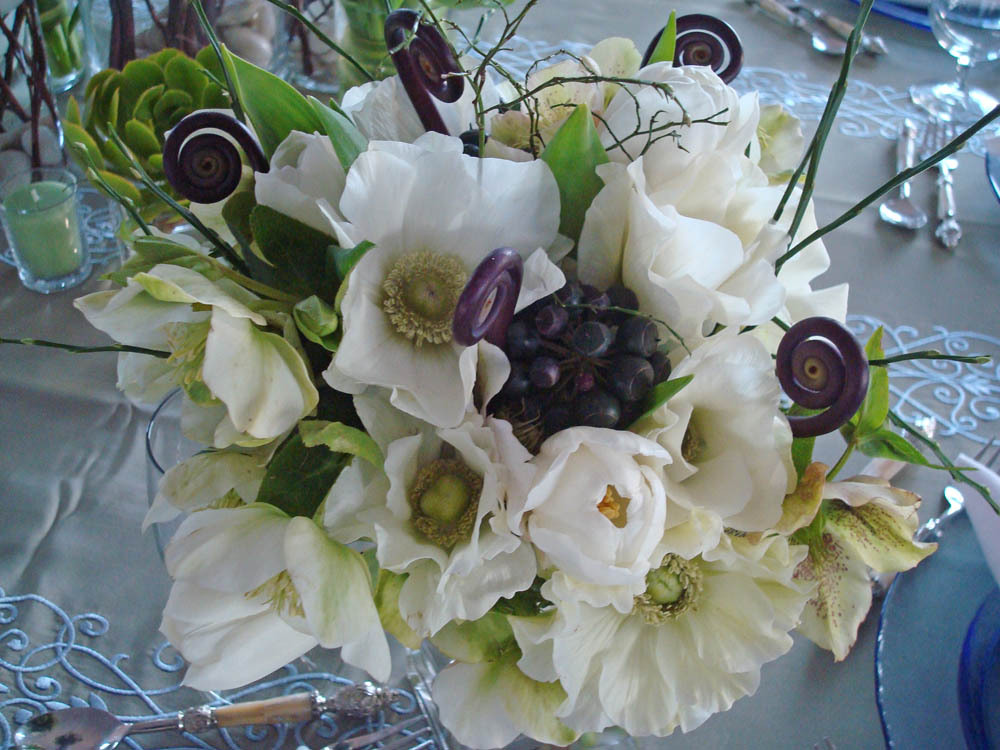 white, Bouquet, Fleurs de france