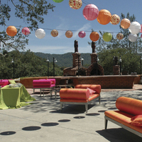 Wine country party and events