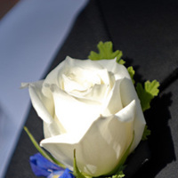 Flowers & Decor, Boutonnieres, Flowers, Groom, Boutonniere, Jeff lamppert photography