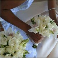 Flowers & Decor, white, blue, Bride Bouquets, Flowers, Bouquet