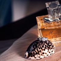 Vintage, Modern, Rings, Details, Studio nautilus photography, Fresh, Perfume
