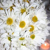 Ceremony, Reception, Flowers & Decor, white, yellow, green, Ceremony Flowers, Bride Bouquets, Centerpieces, Modern, Flowers, Modern Wedding Flowers & Decor, Bouquet, Centerpiece, Daisy, La partie events, Lantern