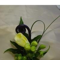 Boutonniere, Floralisa, Freesia
