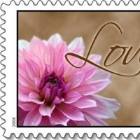 Flowers & Decor, Flower, Wedding, Love, Stamp, Everafter stamps, Postage, Everafterstamps