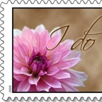 Everafter stamps