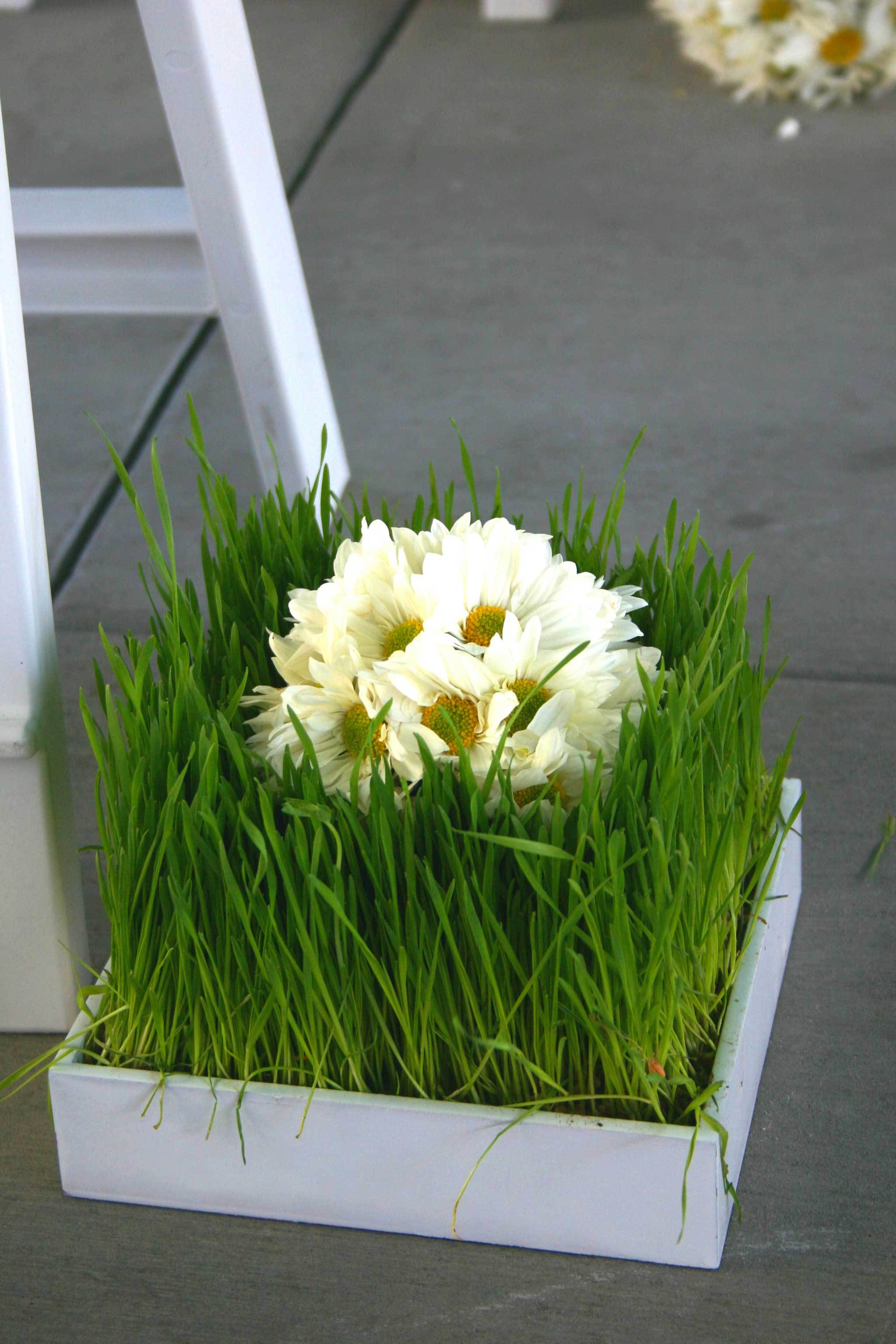 Flowers & Decor, white, green, Ceremony Flowers, Aisle Decor, Modern Wedding Flowers & Decor, Spring Wedding Flowers & Decor