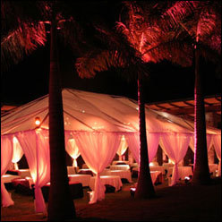 Reception, Flowers & Decor, Beach, Beach Wedding Flowers & Decor, Wedding, Hawaiian, Tents, Sunset hawaii weddings, Caterers