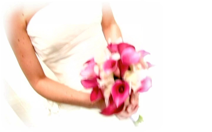 Videography, pink, Bouquet, Focal point digital media, Throw