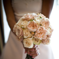 Flowers & Decor, white, Flowers, Roses, Kali kraum photography, Creme