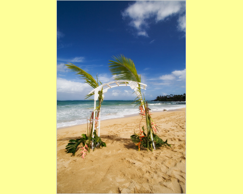 Flowers & Decor, Destinations, Hawaii, Beach, Food, Flowers, Beach Wedding Flowers & Decor, Tent, Dinner, Rentals, Lawn