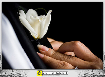 Flowers & Decor, white, Flower, Boutonniere
