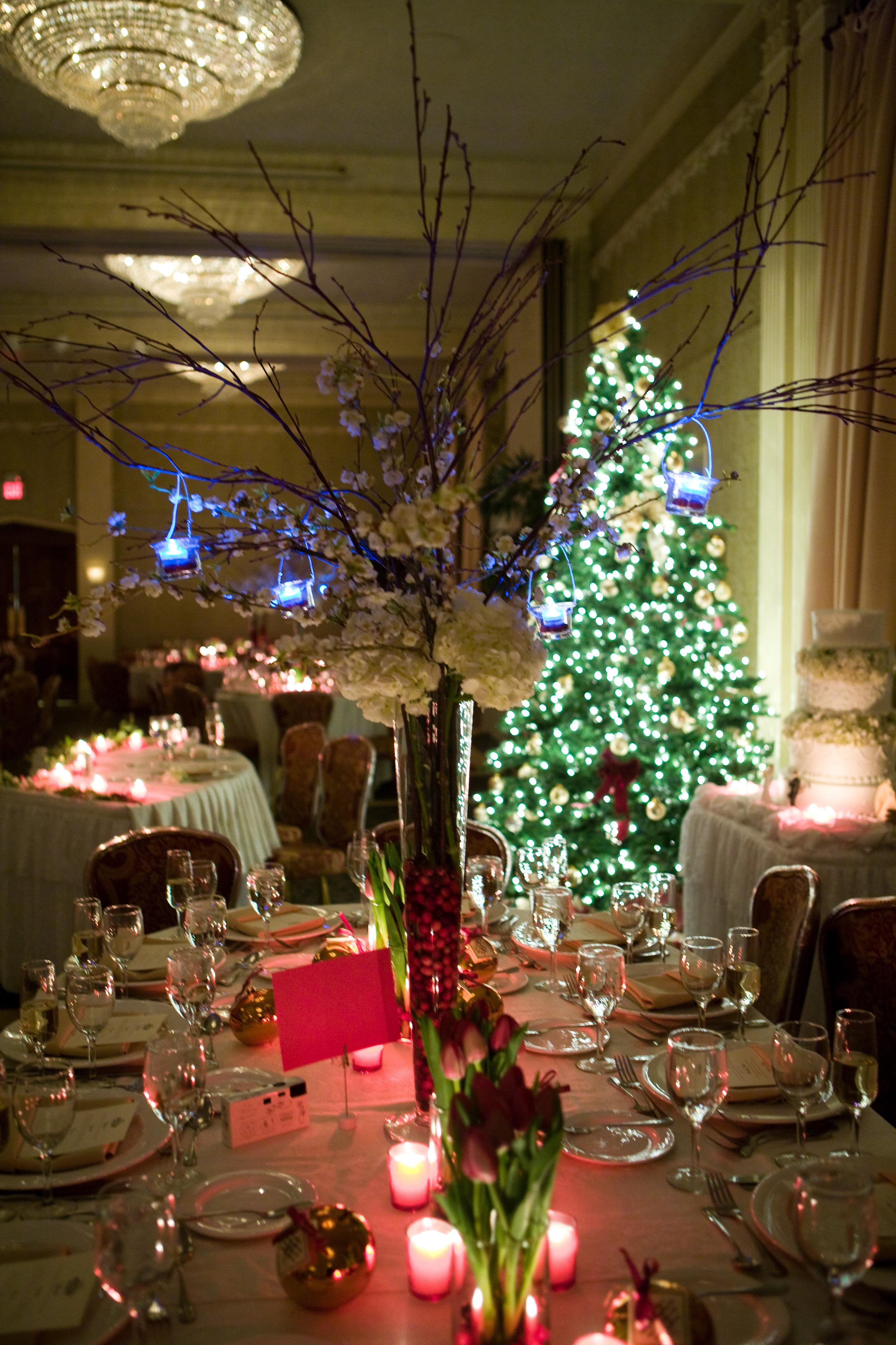 Reception, Flowers & Decor, red, green, Centerpieces, Winter, Centerpiece, Christmas