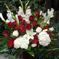 Flowers & Decor, white, red, Centerpieces, Flowers, Roses, Centerpiece, Hydrangea, Gerber daisies, Calla-lilies