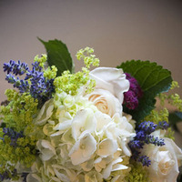 Bouquet, Jenn frankavitz photography