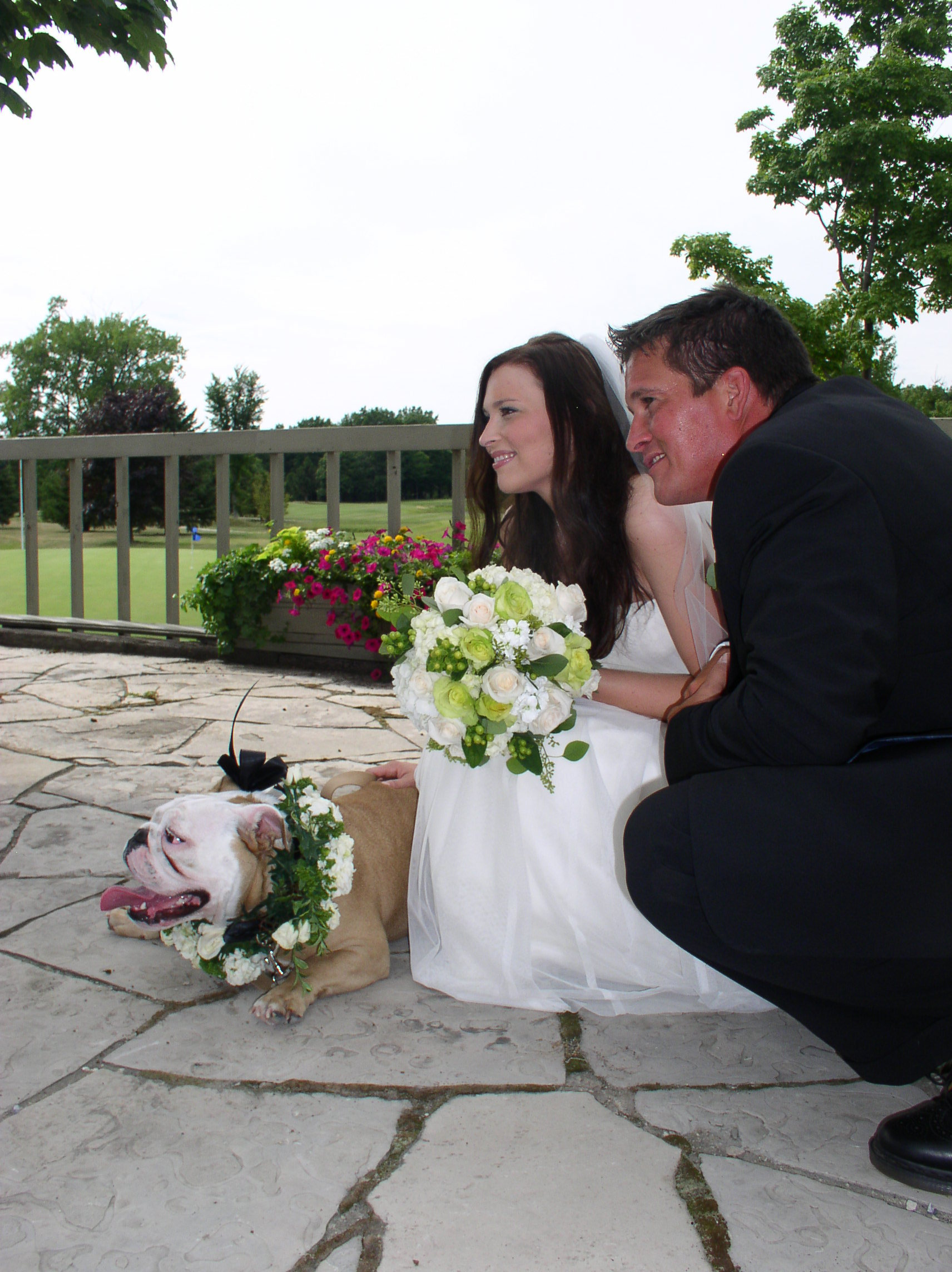 Flowers & Decor, Bride Bouquets, Flowers, Brides, Dog, The flower alley