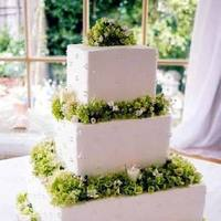 Flowers & Decor, Cakes, white, green, Flowers