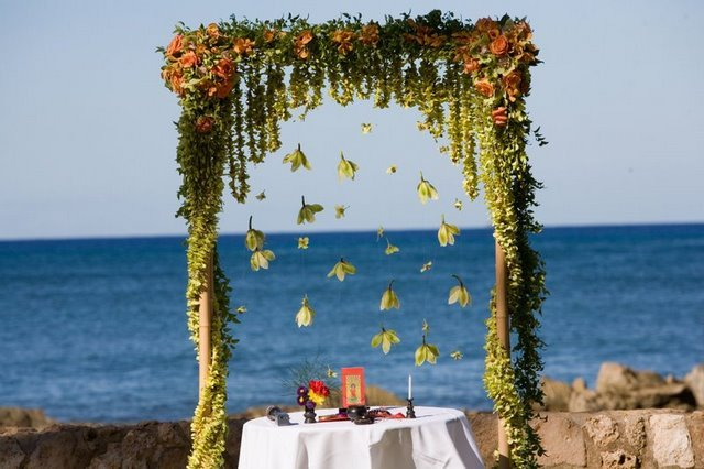 Ceremony, Flowers & Decor, Decor, Arch