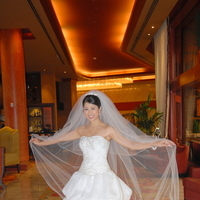 Veils, Fashion, Veil, Wedding dress