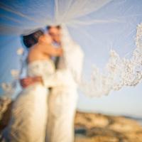Veils, Fashion, Bride, Groom, Veil, Wedding, Orange turtle photography
