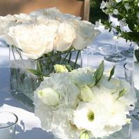 Flowers & Decor, white, green, Centerpieces, Flowers, Centerpiece, Table, Unique, Floral, Designer, Design, Florist, Maria, Masterson