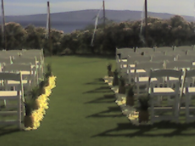 Ceremony, Flowers & Decor, Decor, Ceremony Flowers, Flowers, Pathways