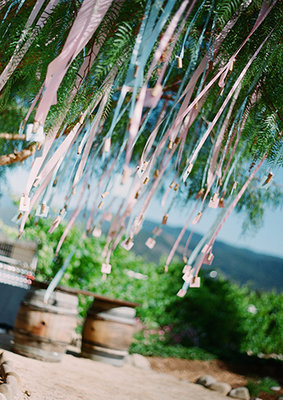 Reception, Flowers & Decor, Decor, Streamers