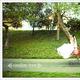 1375015375 small thumb 99fd9b39537f5515c619102fd5a52dae