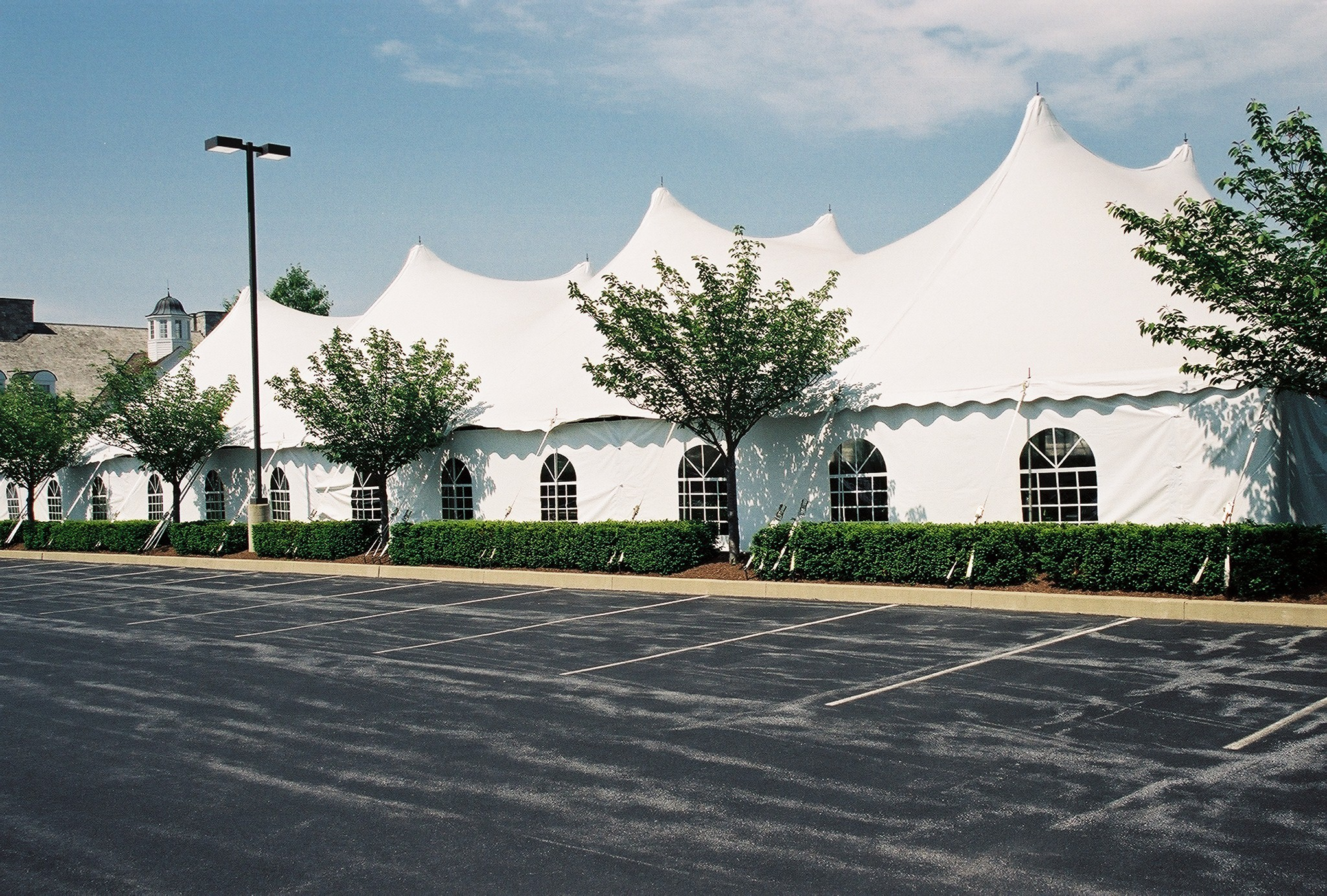 white, For, Tents, Tents for rent, Rent