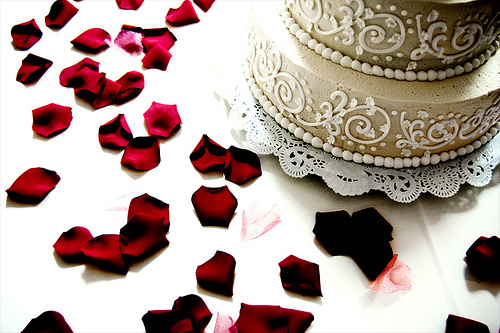 Cakes, cake, Emily porter photography
