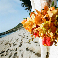 Flowers & Decor, Beach, Bride Bouquets, Spring, Flowers, Beach Wedding Flowers & Decor, Bouquet