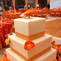 Reception, Flowers & Decor, Cakes, orange, gold, cake, Flowers, Sunset
