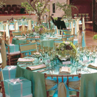 Reception, Flowers & Decor, blue, green, Aqua