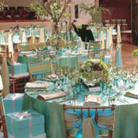 Reception, Flowers & Decor, blue, green, Aqua