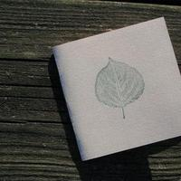 Stationery, invitation, Invitations, Leaf, Invite, Nature, Stamp, Blustery day design