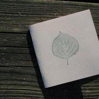 Stationery, invitation, Invitations, Leaf, Invite, Nature, Stamp, Blustery day design
