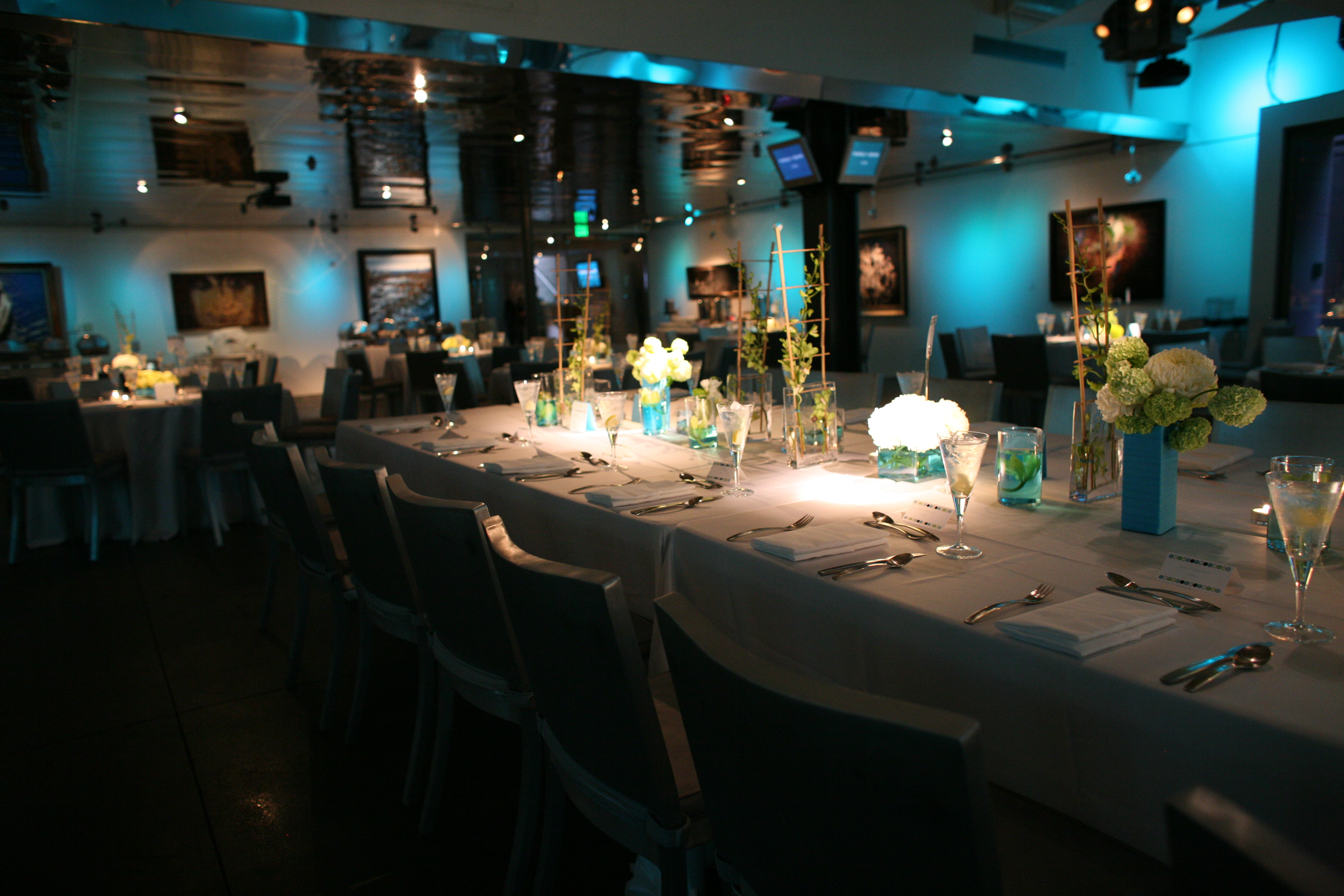 white, blue, green, Centerpieces, Lighting, Table, Orchids, Head