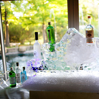 Reception, Flowers & Decor, Ice, Martini, Bar